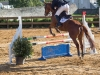 concours-20-oct-2013-15-of-354