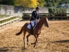 concours-20-oct-2013-13-of-35