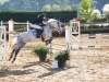 concours-20-oct-2013-22-of-356