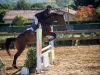 concours-20-oct-2013-23-of-356