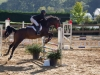 concours-20-oct-2013-24-of-356