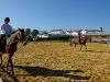 equitation_033